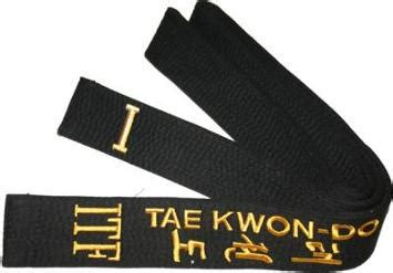 What it means to be a Black Belt: International Taekwon